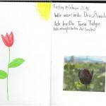 Naturtagebuch 11
