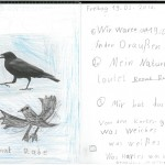 Naturtagebuch 14