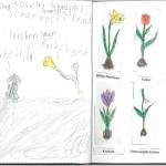 Naturtagebuch April II